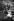 Christian IX (1818-1906), roi du Danemark et sa famille : sa fille Alexandra (1844-1925, princesse de Galles et épouse d'Edouard VII), son épouse la reine Louise de Hesse-Cassel, sa petite-fille Louise (1867-1931), future duchesse de Fife. © TopFoto / Roger-Viollet