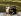 Le prince et la princesse de Galles avec leur fils, le prince William. Auckland (Nouvelle-Zélande), 1er avril 1983. © TopFoto/Roger-Viollet