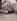 """""""Angle des rues Blainville et Mouffetard"""", Paris (Vème arr.), 1912. Photographie d'Eugène Atget (1857-1927). Paris, musée Carnavalet. © Eugène Atget / Musée Carnavalet / Roger-Viollet"""