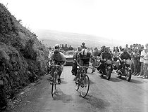 Tour de France 1964. Jacques Anquetil (1934-1987) and Raymond Poulidor (1936-2019), French racing cyclists, in the Puy-de-Dôme (France). © Roger-Viollet