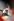 Fidel Castro (1926-2016), homme d'Etat et révolutionnaire cubain, à la tribune. 30ème anniversaire de la Révolution. Défilé du 1er mai. La Havane (Cuba), 1988. © Françoise Demulder/Roger-Viollet