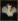 """Frans Pourbus le Jeune (1569/1570-1622). """"Marie de Médicis (1575-1642), reine de France, seconde femme de Henri IV (1553-1610)"""". Paris, musée Carnavalet. © Musée Carnavalet/Roger-Viollet"""