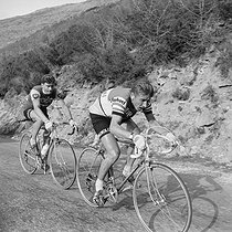 Raymond Poulidor (1936-2019) and Jacques Anquetil (1934-1987), French racing cyclists, during a stage of the Tour de France. © Roger-Viollet
