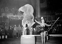 Gala de l'Union des Artistes, charity circus performed by artists. Annie Cordy (born in 1928), Belgian singer and actress, as a dog trainer. Paris, on February 25, 1953. © Roger-Viollet