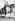 Joséphine (1763-1814), impératrice des Français, femme de Napoléon Ier, couronnée en l'église cathédrale Notre-Dame de Paris, le 2 décembre 1804. Gravure. © Roger-Viollet