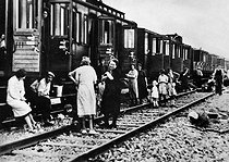 World War II. Train of refugees having a break in the country during the Exodus in France, June 1940. © Roger-Viollet