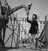 Amar travelling circus. France, circa 1940. © Gaston Paris / Roger-Viollet