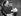 """Alfred Hitchcock (1899-1980), cinéaste américain, lors du tournage de son film """"Le Crime était presque parfait"""". Etats-Unis, 1954.  © TopFoto / Roger-Viollet"""
