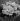 Bouquet de roses. France. © Gaston Paris / Roger-Viollet