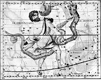 "Serpentaire, constellation. Carving of l ' John Flamsteed's ( 1646-1719 ) "" atlas "". © Roger-Viollet"