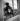 Chat dans une vitrine.   © Studio Lipnitzki / Roger-Viollet