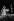 Ella Fitzgerald (1917-1996), chanteuse de jazz américaine, lors de l'inauguration de la fondation Maeght, en présence du ministre de la culture André Malraux (1901-1976). Saint-Paul-de-Vence (Alpes-Maritimes), 28 juillet 1964. Photographie de Jean Marquis (1926-2019). © Jean Marquis / Roger-Viollet
