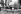 Journée internationale de la femme. Femmes manifestant pour leurs droits. Düsseldorf (Allemagne), 8 mars 1988.  © Klaus Rose/Ullstein Bild/Roger-Viollet