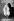 Guerre 1939-1945. Affiche de mise en garde contre la 5ème colonne, par Paul Colin. France. Septembre 1939 - mai 1940.    © Roger-Viollet