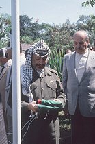 Yasser Arafat (1929-2004), Palestinian leader, head of the Palestine Liberation Organization, running up the flag inside the Palestinian embassy. Libreville (Gabon), April 1989.   © Françoise Demulder / Roger-Viollet