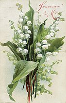 "Lily of the valley. ""May Memory"". Postcard of May Ist. © Roger-Viollet"