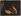 Un marchand de citrons. Istanbul (Turquie). Autochrome. Photographie de Jules Gervais-Courtellemont (1863-1931). Cinémathèque Robert-Lynen, Ville de Paris. © Jules Gervais-Courtellemont/Cinémathèque Robert-Lynen/Roger-Viollet