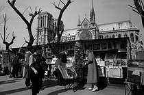 Secondhhand booksellers at the quai de Montebello and the Notre-Dame cathedral. Paris, 1984. Photograph by Janine Niepce (1921-2007). © Janine Niepce / Roger-Viollet