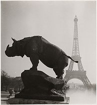Sculpture of a rhinoceros (by Alfred Jacquemart) in the Trocadero gardens, and view on the Eiffel Tower, Paris (VIIth and XVIth arrondissements). 1934. Photograph by Roger Schall (1904-1995). Paris, musée Carnavalet. © Roger Schall / Musée Carnavalet / Roger-Viollet
