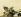 """Le Caravage (v. 1571-1610). """"Panier de fruits"""". Huile sur toile, 1596-1598. Milan (Italie), pinacothèque Ambrosiana. © Iberfoto / Roger-Viollet"""