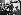 Guerre 1939-1945. Discours radiodiffusé d'Adolf Hitler (1889-1945), homme d'Etat allemand, au Reichstag de Berlin, le 1er septembre 1939 (1er jour de l'invasion de la Pologne). © Roger-Viollet