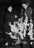 Entrevue Adolf Hitler - Arthur Neville Chamberlain. Munich, 24 septembre 1938.   © Roger-Viollet