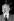 Alfred Hitchcock (1899-1980), cinéaste américain. Juin 1956.  © Roger-Viollet