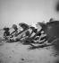 Enfants sur la plage de Biarritz (Pyrénées-Atlantiques), 1934.     © Boris Lipnitzki/Roger-Viollet