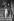 Karl Lagerfeld (1933-2019), couturier allemand. © Jack Nisberg / Roger-Viollet