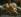 """Giuseppe Maria Crespi (Lo Spagnolo, 1665-1747). """"La Sainte Famille"""", détail de deux Puttis, 1680-1747. Bergantino (Italie), église paroissiale. © Alinari/Roger-Viollet"""