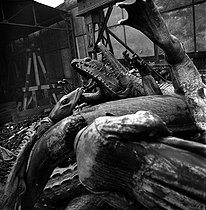 World War II. German occupation. Destruction of statues to recycle the metal. Alligators from the place de la Nation, by Georges Gardet (1863-1939). Paris, 1941. © Pierre Jahan/Roger-Viollet