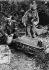 Guerre 1939-1945. Front de Normandie, juin 1944. Soldats allemands spécialistes des pigeons voyageurs. © LAPI/Roger-Viollet