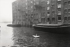 Warehouses. London (England), 1958. © Jean Mounicq/Roger-Viollet