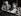 Colette (1873-1954), écrivain français, et son mari, Maurice Goudeket, chez eux. Paris, Palais Royal, 1953. © Janine Niepce/Roger-Viollet