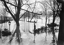 1910 Great Flood of Paris. The Vert-Galant park. © Maurice-Louis Branger/Roger-Viollet