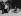 Richard Strauss (1864-1949), compositeur et chef d'orchestre allemand, faisant de la luge. Schierke (Allemagne). © Roger-Viollet