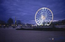 Tuileries Garden. The Eiffel Tower and the big wheel. Paris, December 2000. © Roger-Viollet