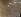Apollo XI. Module dans l'orbite lunaire. 20 juillet 1969.  © Roger-Viollet