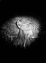 """Nicolska, danseuse, posant pour le bas-relief """"la Danse"""" exécuté par Picot sur la façade du théâtre des Folies-Bergère, à Paris. 1927-1928 © Albert Harlingue / Roger-Viollet"""