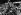Lech Walesa (né en 1943), homme politique et syndicaliste polonais, chef de Solidarnosc, après avoir quitté le tribunal de Varsovie (Pologne), où il a déposé, avec 50 travailleurs, les documents pour la création d'un syndicat indépendant. Il est porté par Tadeusz Mazowiecki. 24 octobre 1980. © Ullstein Bild / Roger-Viollet