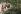 Participants au festival de Woodstock se lavant dans un étang. Bethel (Etats-Unis), août 1969.  © Dan McCoy / The Image Works / Roger-Viollet