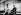 Wilbur Wright (1867-1912), aviateur américain, aux commandes de son appareil. 1911. © Albert Harlingue/Roger-Viollet