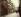 Rue Hautefeuille. Paris, 1902. Photographie d'Eugène Atget (1857-1927). Paris, musée Carnavalet. © Eugène Atget / Musée Carnavalet / Roger-Viollet