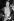 Doris Lessing (1919-2013), romancière britannique, après avoir reçu le prix Shakespeare. Hambourg (Allemagne), 10 juin 1982. © Ullstein Bild/Roger-Viollet
