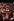 Mariage de Benazir Bhutto, femme politique pakistanaise. Karachi. décembre 1987.   © Françoise Demulder / Roger-Viollet