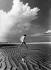 Femme se promenant sur une vasière en bord de mer du Nord, 1974.  © Wolff & Tritschler/Ullstein Bild/Roger-Viollet