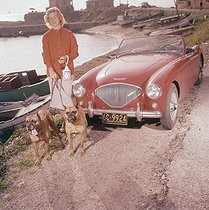 Woman with her dogs. Austin Healey 100 (1953-1956). France, 1960's. © Roger-Viollet