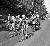 Jacques Anquetil (on the left) and Raymond Poulidor, French racing cyclists. 1964 Tour de France. © Roger-Viollet