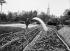 Arrosage des salades. France, vers 1925. © Jacques Boyer / Roger-Viollet