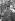 Guerre 1939-1945. Libération de Paris. Le capitaine Dronne, premier officier français arrivé place de l'Hôtel-de-Ville, le 24 août 1944. Paris, photographié le lendemain. © Roger-Viollet